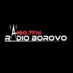 Logo da emissora Radio Borovo 100.7 FM