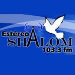 Logo da emissora Radio Estéreo Shalom 103.3 FM