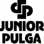 Logo da emissora DJ Junior Pulga