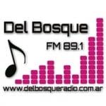 Logo da emissora Radio Del Bosque 89.1 FM