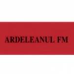 Logo da emissora Ardeleanul 91.2 FM
