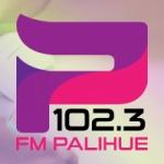 Logo da emissora Radio Palihue 102.3 FM