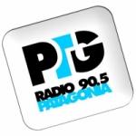 Logo da emissora Radio Patagonia 90.5 FM
