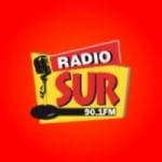 Logo da emissora Radio Sur 90.1 FM