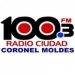 Logo da emissora Radio Ciudad Coronel Moldes 100.3 FM