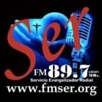 Logo da emissora Radio Ser 89.7 FM