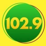 Logo da emissora Rádio Sertaneja 102.9 FM