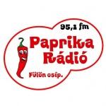 Logo da emissora Paprika 95.1 FM