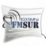 Logo da emissora Radio Sur 103.5 FM