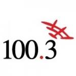 Logo da emissora Radio LU17 100.3 FM