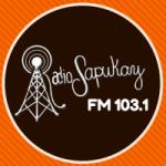 Logo da emissora Radio Sapukay 103.1 FM