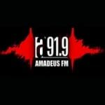 Logo da emissora Radio Amadeus 91.9 FM
