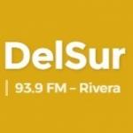 Logo da emissora Radio DelSur 93.9 FM