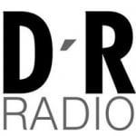 Logo da emissora Radio D' Rock