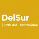 Logo da emissora Radio DelSur 1290 AM