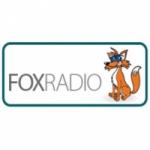Logo da emissora WTSX 96.7 FM