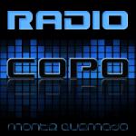 Logo da emissora Radio Copo 95.1 FM