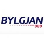 Logo da emissora Bylgian FM 98.9