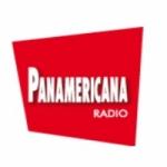 Logo da emissora Radio Panamericana 101.1 FM