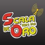 Logo da emissora Radio Scala de Oro 107.1 FM