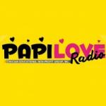 Logo da emissora Radio Papi Love 91.9 FM