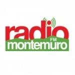 Logo da emissora Rádio Montemuro 87.8 FM