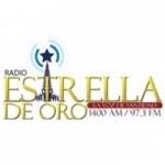 Logo da emissora Radio Estrella de Oro 97.3 FM