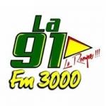 Logo da emissora Radio 3000 91.0 FM