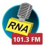 Logo da emissora Rádio Nova Antena 101.3 FM