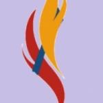 Logo da emissora Alex Web