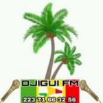 Logo da emissora Radio Djigui FM