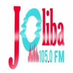Logo da emissora Radio Joliba 105.0 FM