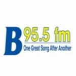 Logo da emissora WYJB 95 FM