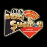 Logo da emissora Radio Sampiyon 89.5 FM