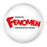 Logo da emissora Radio Fenomen 100.4 FM
