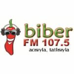 Logo da emissora Radio Biber 107.5 FM