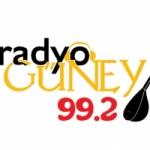 Logo da emissora Radio Güney 99.2 FM