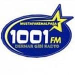 Logo da emissora Radio 1001 100.7 FM