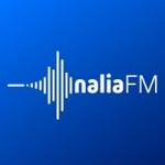 Logo da emissora Radio Nalia 102.1 FM