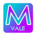 Logo da emissora Rádio Mega Vale