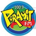 Logo da emissora Piramit FM