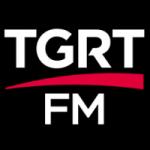 Logo da emissora Radio TGRT 93.1 FM