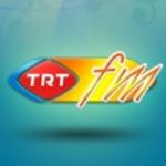 Logo da emissora TRT Radio FM