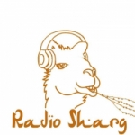 Logo da emissora Radio Sharg