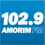Logo da emissora Rádio Amorim 102.9 FM