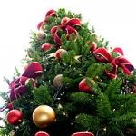 Logo da emissora Christmas Radio Live