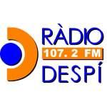 Logo da emissora Radio Despí 107.2 FM