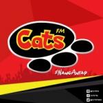 Logo da emissora Radio Cats 99.3 FM