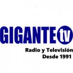 Logo da emissora Radio Gigante 87.7 FM