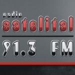 Logo da emissora Radio Satelital 91.3 FM